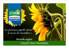 «Le paresseux appelle chance le succès du travailleur ». Proverbe anglais http://www.cimm-immobilier.fr/fr/newsletter-cimm-immobilier-mars-2014-p-r146-3048-634.html