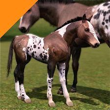 Sims 3 Realistic Horse | headshot_large.jpg