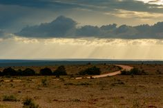 Dirt road leading to the cloudy skies Dirt road leading to the cloudy skies with sun rays.