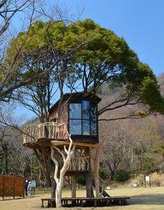 tree house Japan