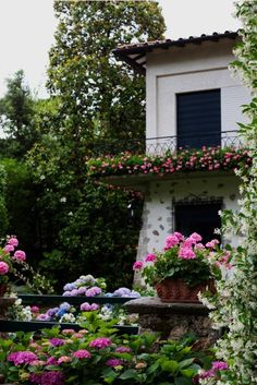 This picture reminds me of a small Villa I saw on a train to Florence! Now all I want to do is hop on a plane and trace my steps through Europe. And of course I'll admire the hydrangeas.
