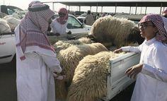 King Salman to cover cost of sacrificial animals for 5000 pilgrims on Hajj program - Arab News