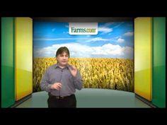 Farms.com Market School Videos (playlist) School Videos, Risk Management, Farms, Marketing, Haciendas, Homesteads, The Farm, Farm Houses