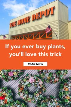 Don't overpay at Home Depot, Target or West Elm: Wikibuy finds deals on plants, gardening essentials and more. Find great products, garden design advice and solutions to common problem by visiting this website West Elm, Home Depot, Organic Horticulture, Organic Gardening, Urban Gardening, Organic Compost, Indoor Gardening, Indoor Plants, Compost Tea