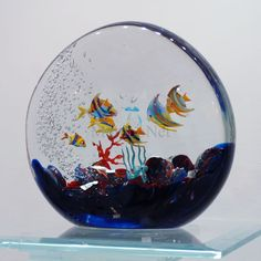 Rounded Murano glass aquarium.