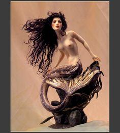 Google-prentresultaat vir http://www.forestrogers.com/storage/ebay-images/mediterranean-mermaid/medit-mermaid-top.jpg