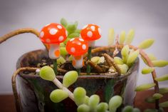 A personal favorite from my Etsy shop https://www.etsy.com/listing/223702071/mushroom-set-for-fairy-gardens-or
