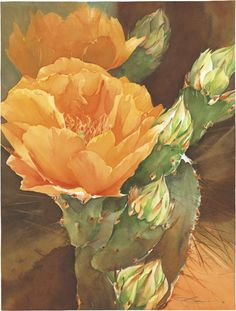 By ~ Jeanne Bonine Watercolor Succulents, Watercolor Cactus, Cacti And Succulents, Watercolor Paintings, Watercolours, Agaves, Desert Flowers, Desert Plants, Southwestern Art