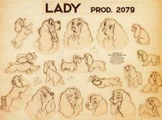 A Dama e o vagabundo é um clássico dos estúdios Walt Disney, criado em 1995. #Disney #EyvingEarle