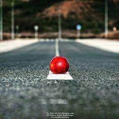 On the road. Again. #foodandwine #foodstyling #foodblogger #foodbeast #foodlover #foodstagram #foodphoto #foodshare #foodgawker #foodislife #fooddiary #foodism #foodiegram #foodaddict #foodprep #foodpost #foodoftheday #healthyliving #foodtrip #vegan #veg #buongiorno #goodmorning #apple #love #ontheroad #road