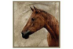 Crackled Horse 3 on OneKingsLane.com