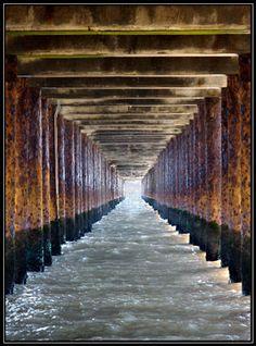 Under the Boardwalk   photo by Hazel Manning