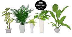 Plant conversions II at MIO via Sims 4 Updates