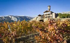 Dos Vinos de Eguren Ugarte Entre los Mejores de España