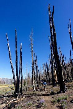 Osberg's Ridgeline Trail, Sun Valley, Idaho. Photo: Greg Heil