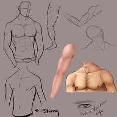 Random Male Anatomy Practice by KingMaria on deviantART