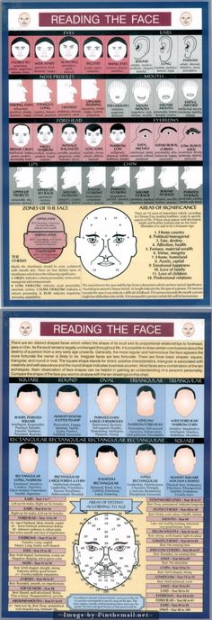 Reading The Face                                                       …