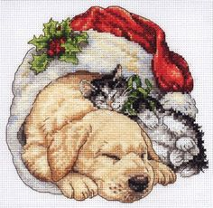 Puppy and kitten having a lazy Christmas.  Counted cross stitch kit.