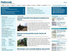 Platformate Wordpress Theme