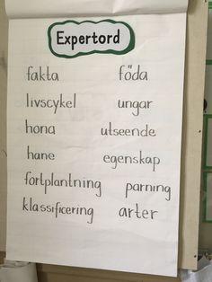 expord