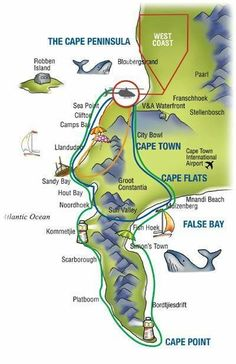 Helicopter Flights, Tours in Cape Town. Helicopter Tours over the Cape Peninsula V&a Waterfront, Namibia, Cape Town South Africa, Helicopter Tour, Travel Planner, Africa Travel, Road Trip, Tours, Women's History