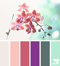 These would be wonderful colors for home.