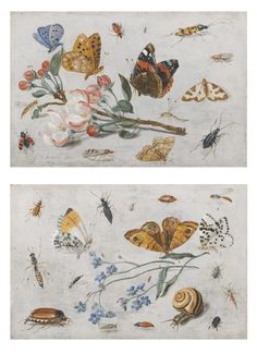 """Study of Insects, Butterflies and a Snail with a Sprig of Forget-Me-Nots"" and ""Study of Butterflies and Other Insects with a Sprig of Apple Blossom"" by Jan Van Kessel. 1659 oil on copper. Sold as a pair July 2013 at Sotheby's London for £302,500 (or $485,530 USD. Similar in nature to (but less beautiful than, IMHO) the 1655 ones in the Dutch cabinet gallery at NGA-DC."