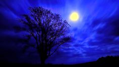 Moon Scenery Backgrounds | ... cloudy, moonlight, forest, photography, wonderful, sky, scenery, moon