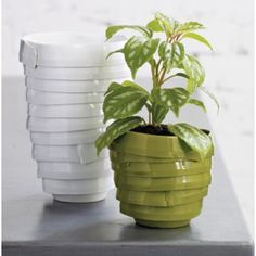 Wrapped Vases - Remnant clay ribbons salvaged from bulk production. very green.