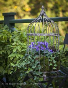 Summer outdoor decor idea, love the cages with flowers. Going to do this and make multi-level.