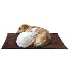 Pet Thermal Mat - The Best Self Warming Pet Dog Bed Mat Crate Pad (X-LARGE) Made of Soft Faux Lambs Wool Upper Material  Super Reflective Thermal Insert With A Removable, Machine Washable Cover -- Want to know more, click on the image.