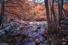 Autumn colors by Andrea Facco via 500px