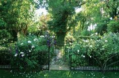 A climbing rose and clematis spill over Sofield's wrought iron gate, leading visitors to the garden adjacent the pool.