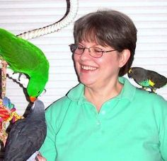 Free Book on Parrot Enrichment: Author Kris Porter