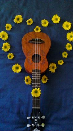 """A Ukulele is a symbol of peace and friendship."""