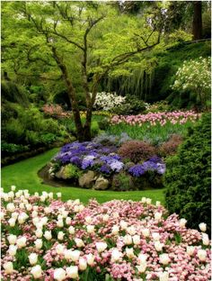 What is a garden without a magical garden path? Walk with us through these flowery wonders.