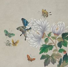 민화 문선영 作 - 화접도-국화 : 네이버 블로그 Etiquette Vintage, Korean Painting, Batik Art, Butterfly Art, Butterflies, Korean Art, Japan Art, Tree Art, Botanical Prints