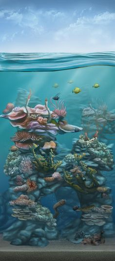 Water coral type by lukkar on DeviantArt
