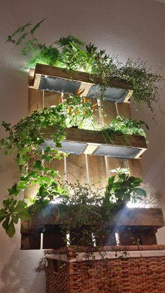 Indoor Growing Under Lights With Leslie Halleck 640 x 480