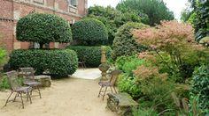 Les Jardins Agapanthe: Portuguese laurel
