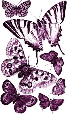 **FREE ViNTaGE DiGiTaL STaMPS**: Free Vintage Digital Stamp - Butterflies