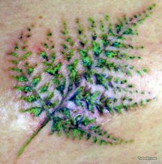 Small Fern Tattoo, celtic meaning: Endurance, Strength, Passion ...