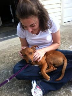 """The day I was rescued and first time being held after being dumped....had hundreds if ticks and had been in a barn for a week and scared of everyone. We love Boudin, """"Boo"""". August 2012"""
