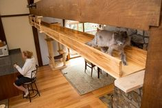 Custom #catification by Mountain Cat Trees