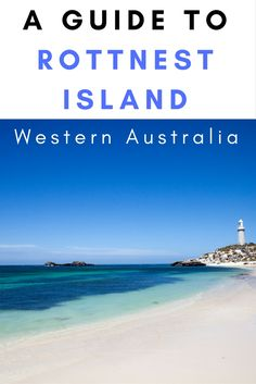 Rottnest Island, Western Australia | quokkas | Australia