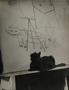 Gjon Mili's cat Blackie looking at his portrait in mural by Saul Steinberg in Mili's studio, NY, 1947