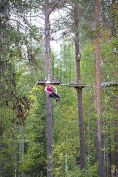 Adventure Park - track 5 #Levi #Lapland #Finland Lapland Finland, Deep Winter, Midnight Sun, Summer Activities, 50th Birthday, All Pictures, Mountain Biking, Outdoor Power Equipment, Skiing