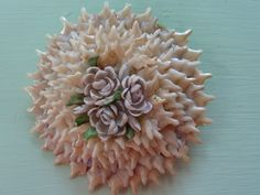 Vintage Shell Brooch From My Collection