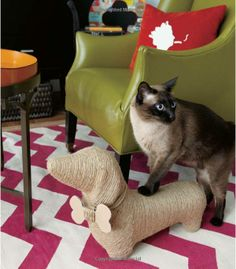 Cutest cat scratcher ever via: Living in a Nutshell: Posh and Portable Decorating Ideas for Small Spaces: Janet Lee
