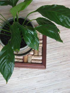 Wine Cork Trivet or Plant